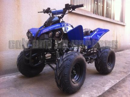 125cc SEMI AUTO QUAD BIKE ATV BUGGY BRAND NEW 2017
