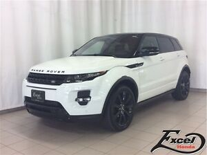 2013 Land Rover Range Rover Evoque Dynamic Premium with Black Pa