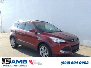 2014 Ford Escape SE FWD *Certified Pre-Owned*