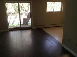 Beautiful 2 Bedroom Suites! Second Month Free! London Ontario image 15