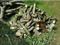 Large Pile Of Logs For Chimnea Barbi Fire Pit Smoker Heater Party's