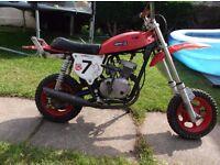 1970s TECNOMOTO PACIUGHINO
