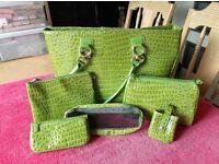 Green handbag brand new never used