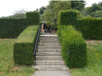 Experienced Gardener Available