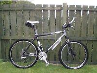 Gary Fisher Big Sur - Hardtail Mountain Bike