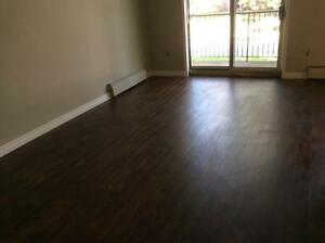 Beautiful 2 Bedroom Suites! Second Month Free! London Ontario image 7