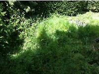 DTGM Gardening Maintenance