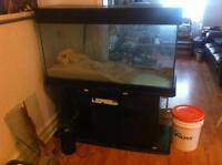 90 gallon aquarium avec meuble et filtres