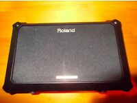 Roland AC battery powered portable amp