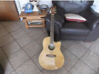 Brunswick acoustic electro guitar for sale with pre amp