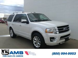 2017 Ford Expedition Limited 4x4 with Blind Spot, Moonroof and P