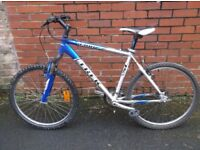 Mans Trex Mountain Bike