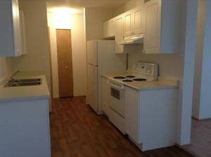 Camrose: 2 bedroom senior friendly suite available