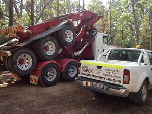 Timber logging Coffs Harbour Coffs Harbour City Preview