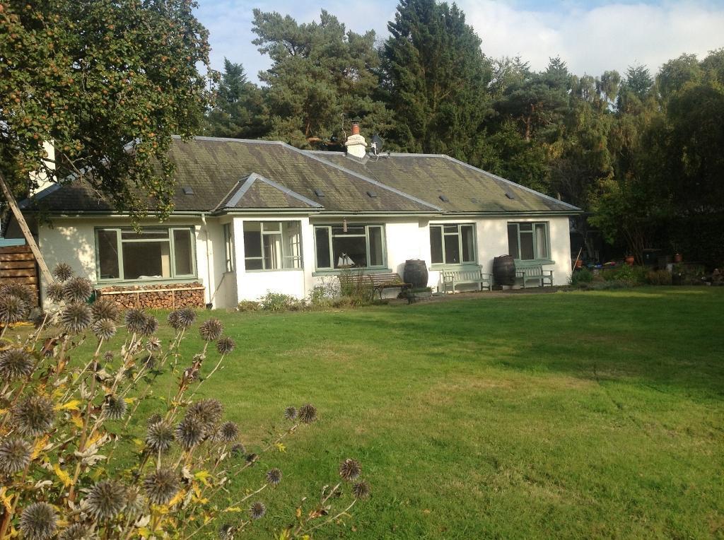 Large 2 Bed Roomed Cottage For Rent In Rosemount