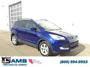2016 Ford Escape SE AWD 1.6L Ecoboost Heated Seats Power LIftgat