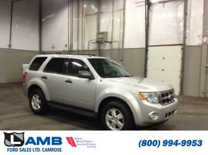 2009 Ford Escape XLT 4x4 with Canadian Winter Package, Sync Syst