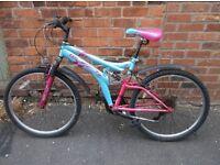ladies dunlop mountain bike