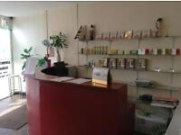 Chinese professional treatment and massage in West Hampstead