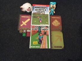 Minecraft Toys & Books