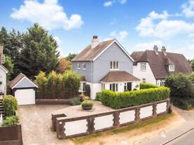 Beautiful 3-bedroom detached house located in a quiet village