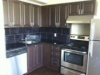 Sunny 2 Bedroom - Walk To All Amenities - Parking Available