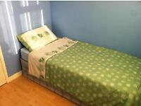Single Rooms for Rent