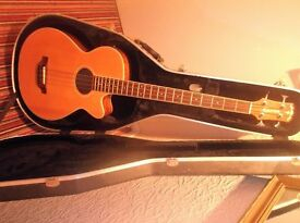 Acoustic bass and hard case