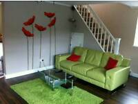 3 Leather Seater Sofa, red coffee table, green rug and cabinet