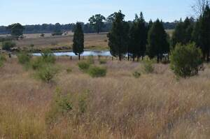 FOR  SALE 29R Panai Ave Dubbo vacant 100 acre block Dubbo Dubbo Area Preview