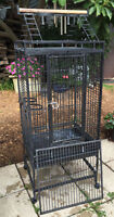 Parrot CAGE Perroquet