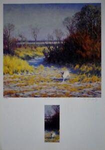 "Art4u2enjoy ""Winter Jack Rabbit"" by Dwayne Harty Mtl"