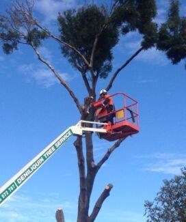 ****DENILIQUIN TREE SERVICE**** Deniliquin Murray Area Preview