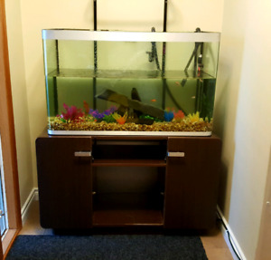 Fluval 60 gallon tank with fluval filter and matching stand