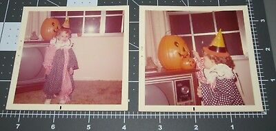 Halloween Pumpkins Photos (TWO Halloween PUMPKINS Jack O Lantern Clown Jester COSTUME Vintage Color)