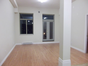 Bright 1 bedroom newer apartment in Mission BC