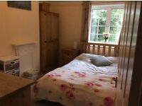 Pretty double room available to rent