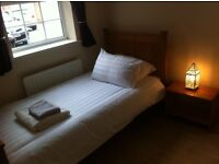 Single room to let short term