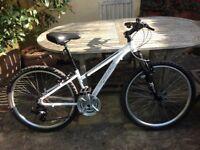 Ridgeback White Mountain Bike