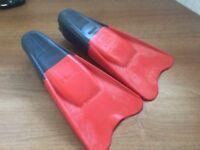 Short Fin Flippers