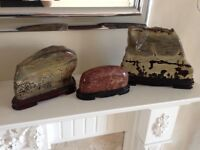 polished rock specimen ornaments mounted on wood plinths