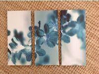 'NEXT' wall art - 3 canvas floral prints