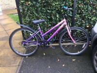 Ladies paradise bike