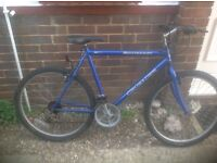 Mans Crusader Mountain Bike 15 sp