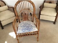 Lovely cane armchair elegant shape feathered cushioned seat ex.con.
