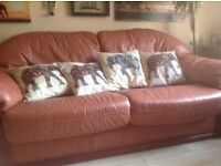Three seater sofa matching chair leather