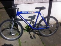 Gents Warrior Mountain Bike Good working order ready to go