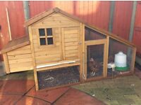 Chickens/coop/run and more