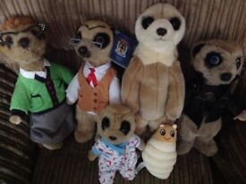 Compare the market meerkat toys £3 each