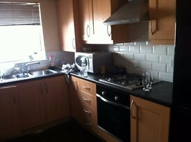 double room with on suite facility in NEW FLAT FULLY FURNISHED
